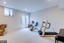 Recreation room with walk-out through atrium door - 41629 WHITE YARROW CT, ASHBURN