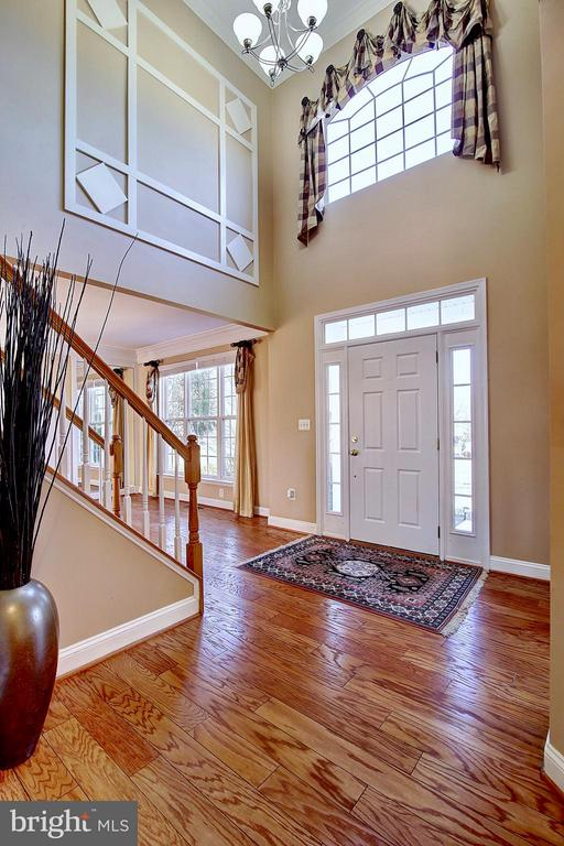 Foyer - 25804 SPRING FARM CIR, CHANTILLY