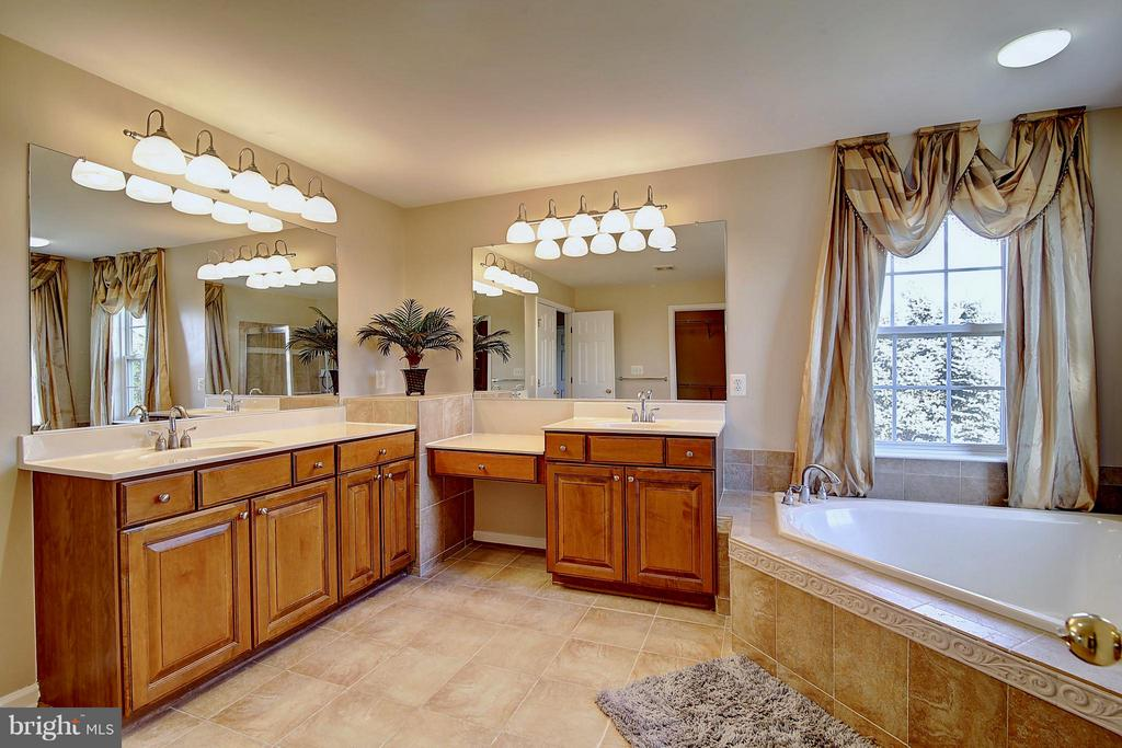 Master Bath - 25804 SPRING FARM CIR, CHANTILLY
