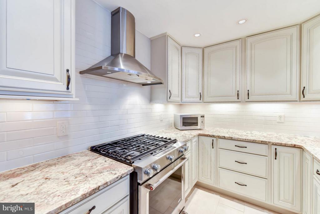 Natural Stone Counters and Gas Range - 621 ST ASAPH ST N #103, ALEXANDRIA