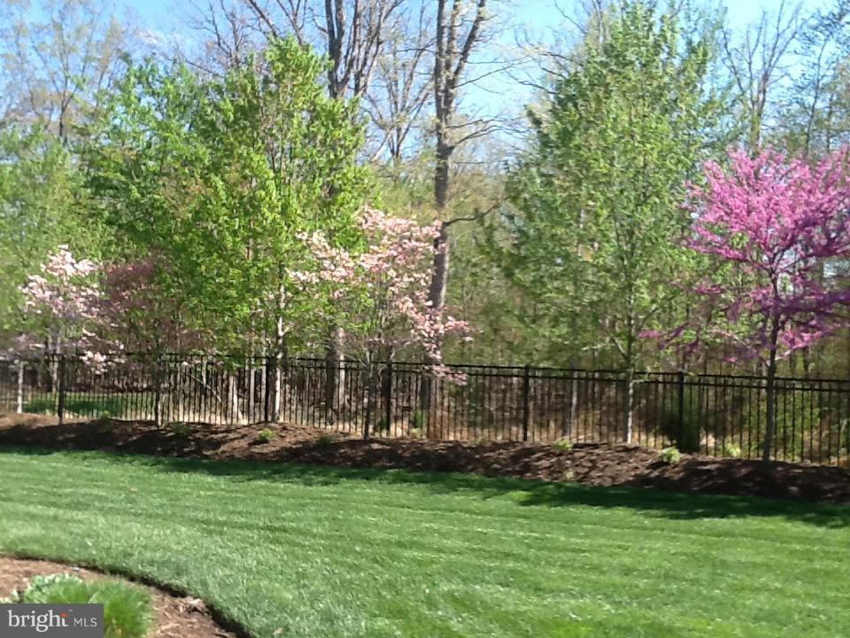 Lovely lawn and landscaping in  backyard retreat - 5862 SADDLE DOWNS PL, CENTREVILLE