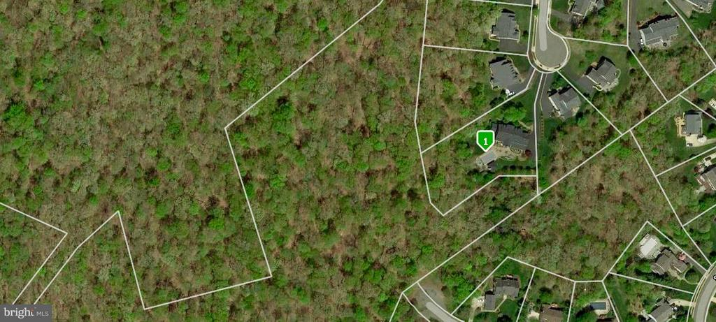 1.34 acres on a cul-de-sac, backing to parkland. - 5862 SADDLE DOWNS PL, CENTREVILLE
