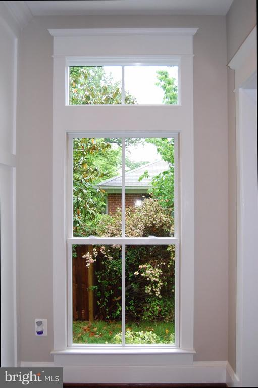 Large and generously-framed Jen-Weld windows - 5601 WILLIAMSBURG BLVD, ARLINGTON