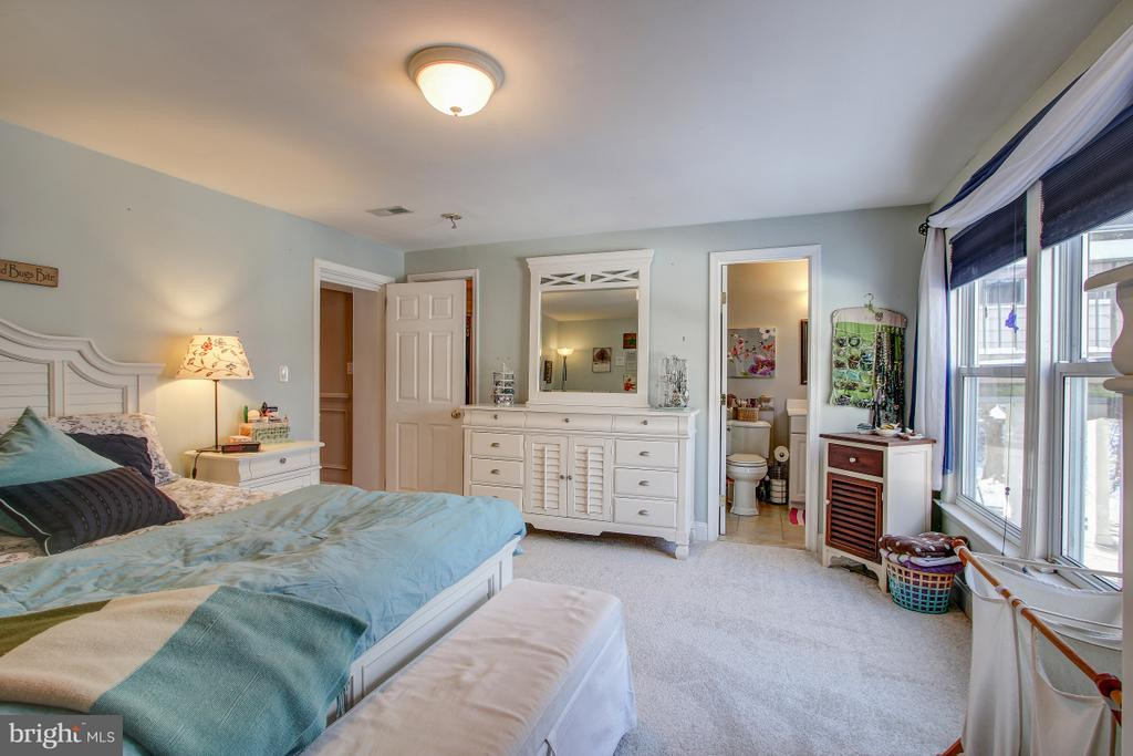 Master Suite on entry level, ample natural light - 4616 UPLAND DR, ALEXANDRIA