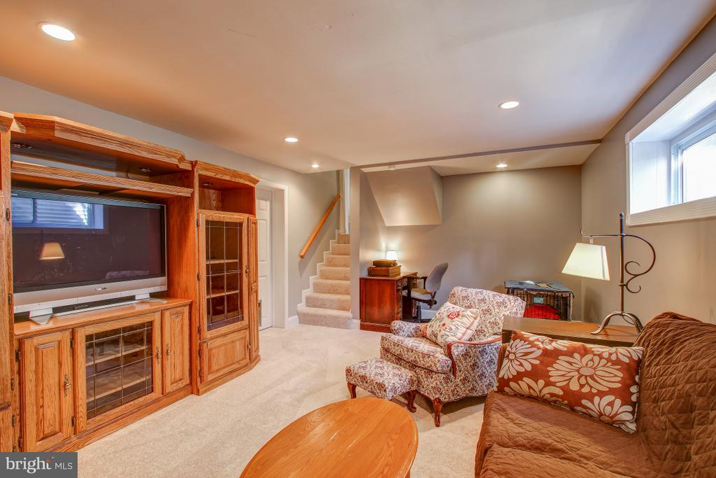 Large rec room with natural light - 4616 UPLAND DR, ALEXANDRIA