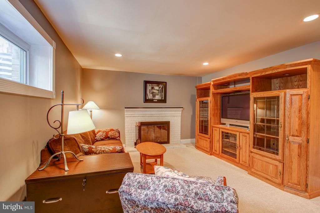 Large rec room on lower level - 4616 UPLAND DR, ALEXANDRIA