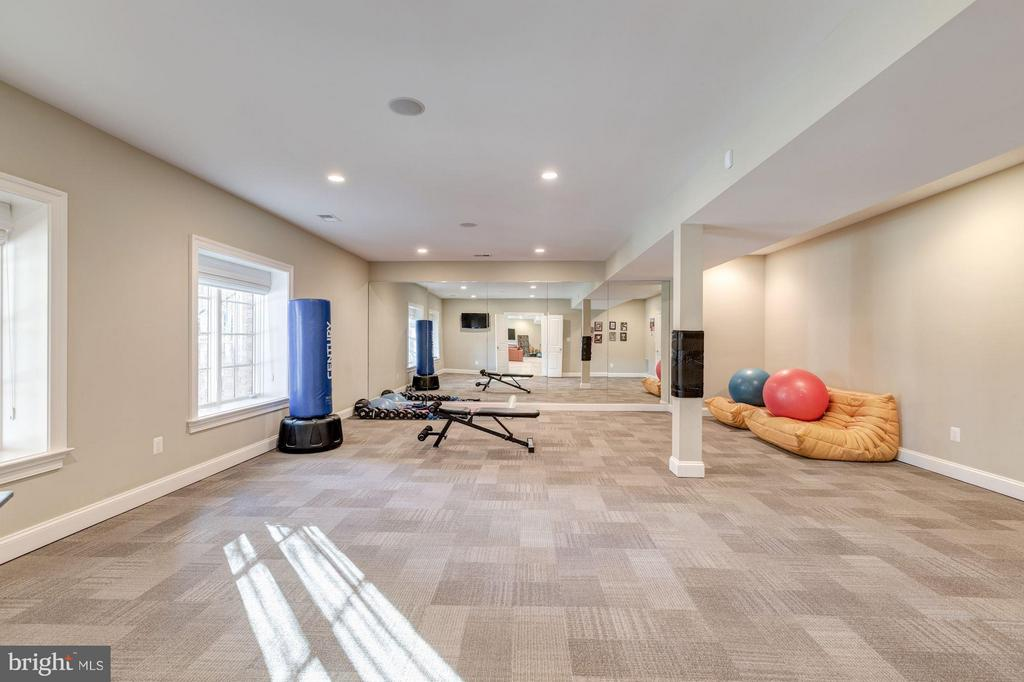 Lower Level - Exercise Room - 8459 PORTLAND PL, MCLEAN