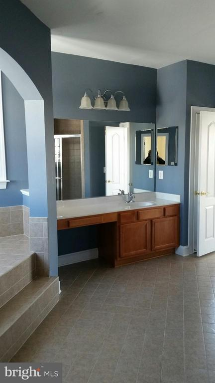 Master bathroom with 2 sinks - 44064 RIVERPOINT DR, LEESBURG
