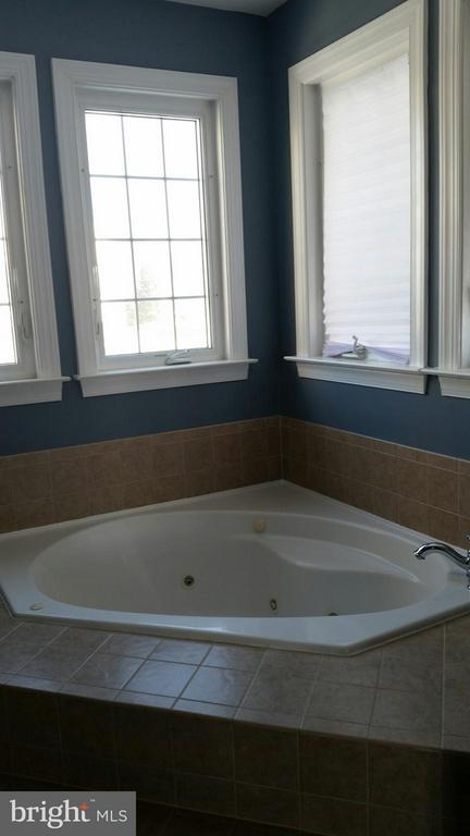 Master bath with jets - 44064 RIVERPOINT DR, LEESBURG