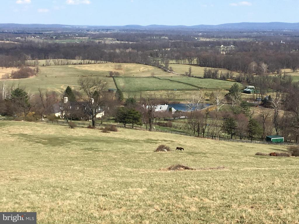 View of Trappe Hill Farm from an upper field. - 20561 TRAPPE RD, UPPERVILLE