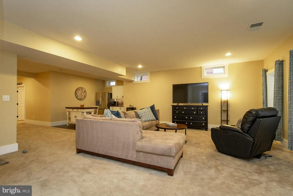 Basement Family Room - 16964 TAKEAWAY LN, DUMFRIES