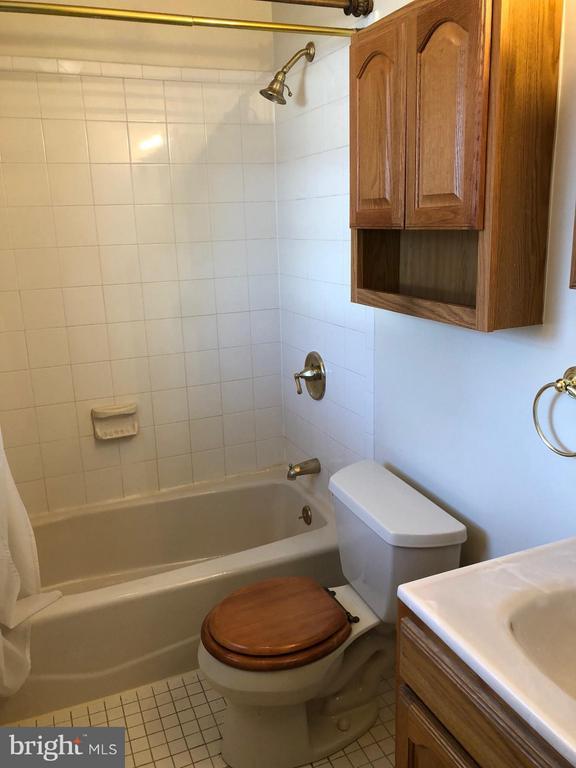 3rd level bath - 1123 MICHIGAN AVE NE, WASHINGTON