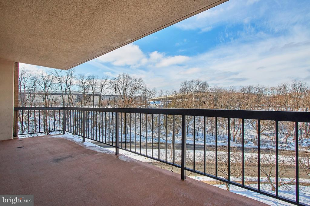 Huge Balcony with Tree Top views! - 5500 HOLMES RUN PKWY #805, ALEXANDRIA