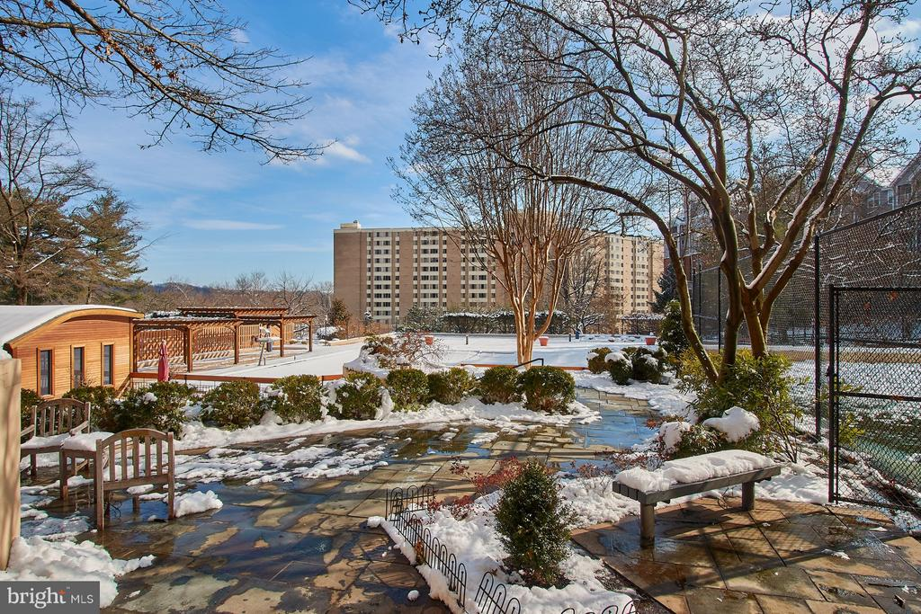 Beautiful grounds, even in winter! - 5500 HOLMES RUN PKWY #805, ALEXANDRIA