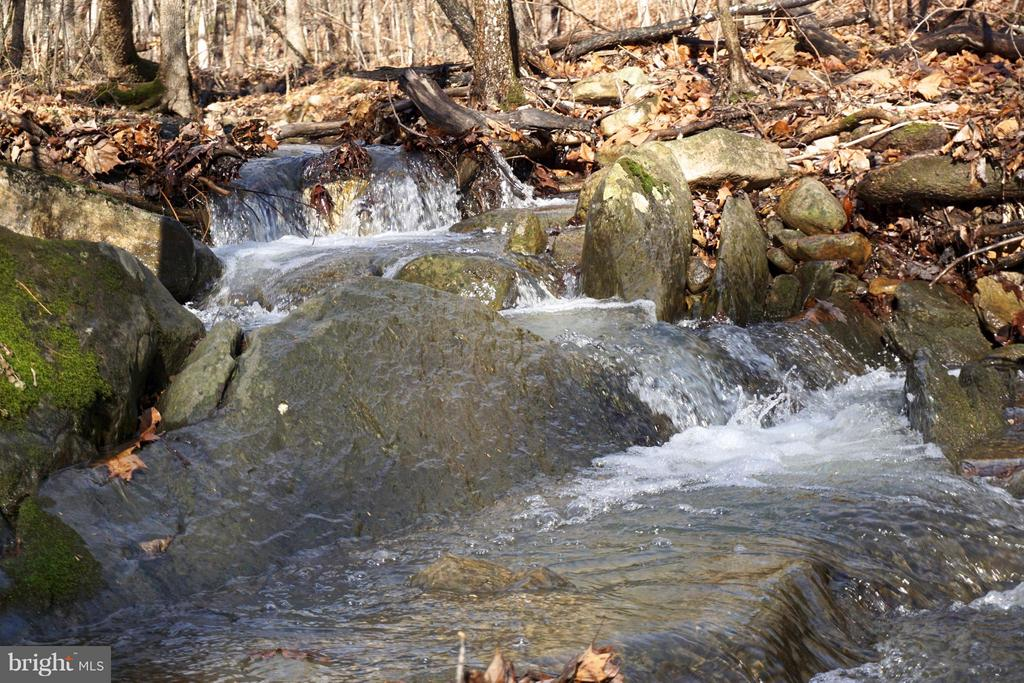 Gentle rolling stream - 3970 PANHANDLE RD, FRONT ROYAL