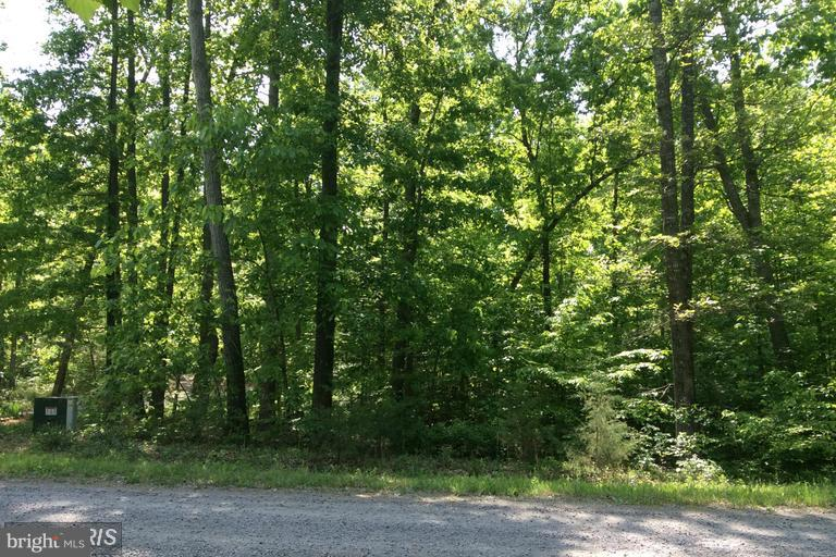 Land for Sale at Stonesiffer Ln Unionville, Virginia 22567 United States