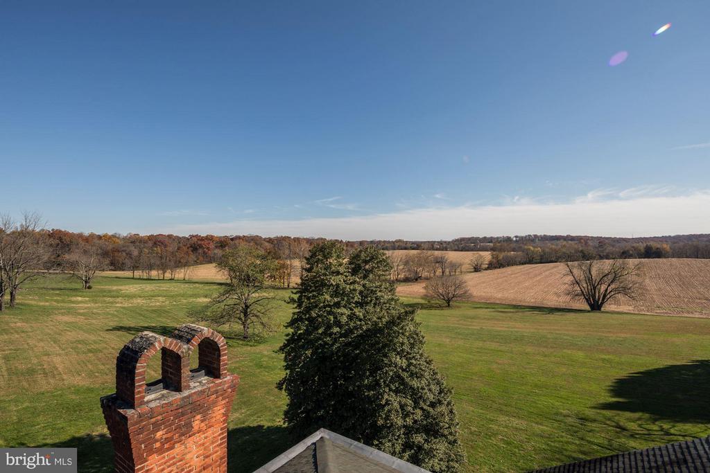 View from Widow's Walk - 16449 ED WARFIELD RD, WOODBINE