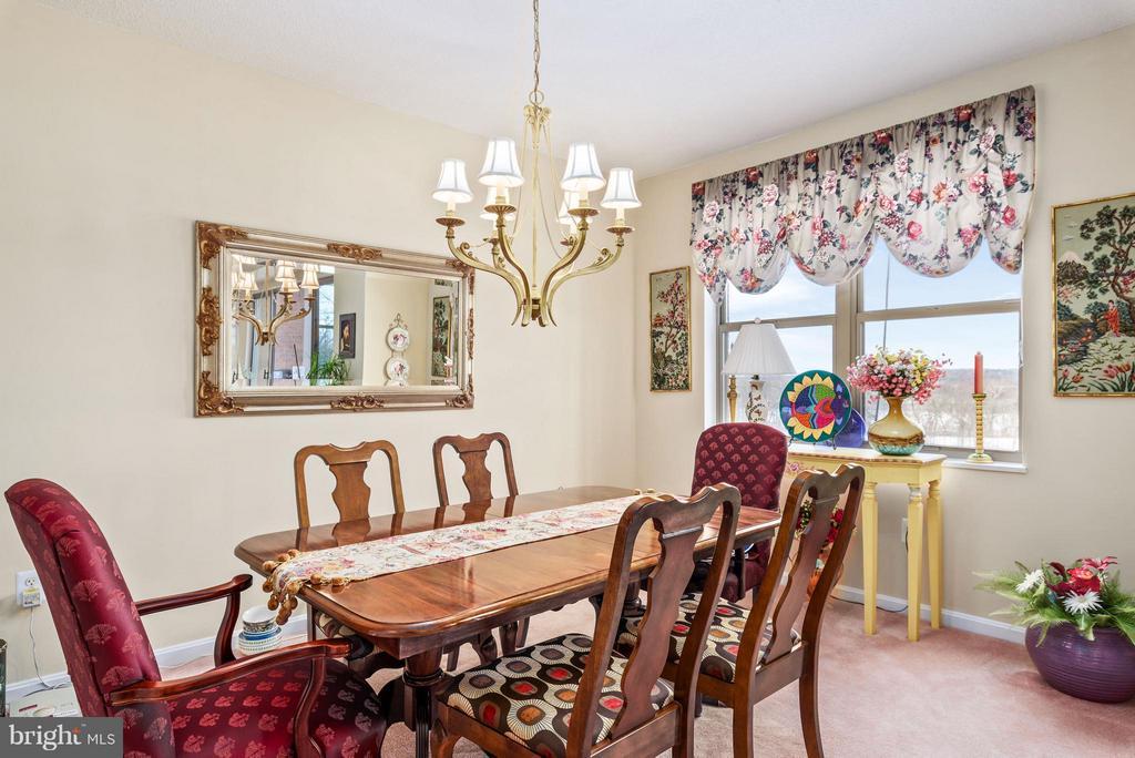 Dining Room - 19360 MAGNOLIA GROVE SQ #101, LEESBURG