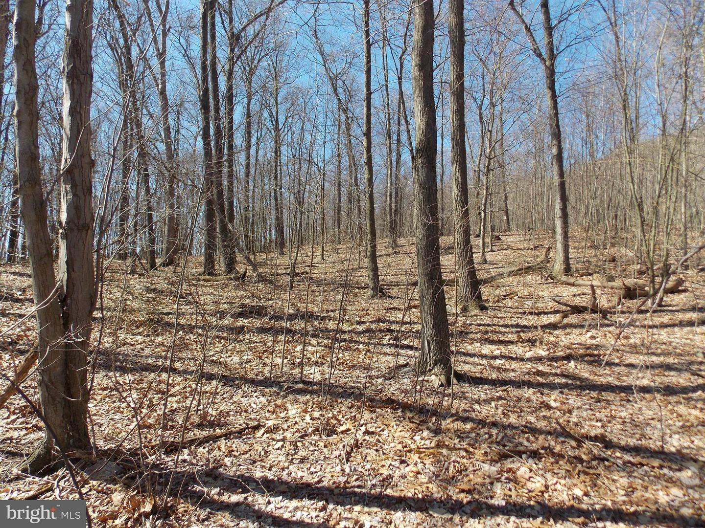 Land for Sale at Mc Alisterville, Pennsylvania 17049 United States