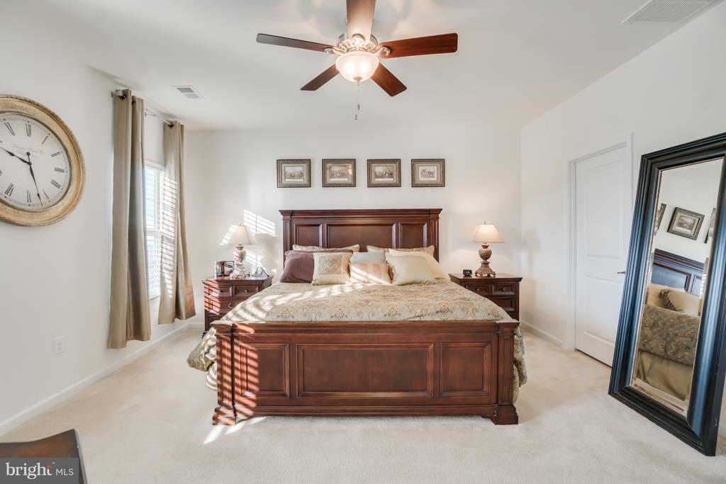 Master Bedroom with Large Walk In Closet - 117 SWEETGUM CT, STAFFORD