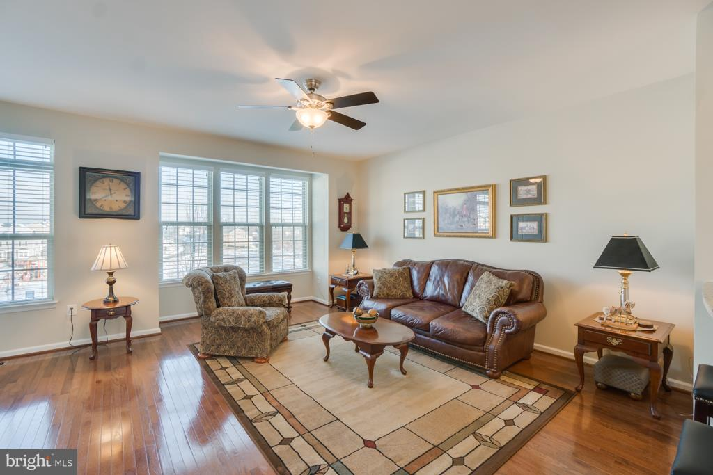 Large Bright Windows - 117 SWEETGUM CT, STAFFORD