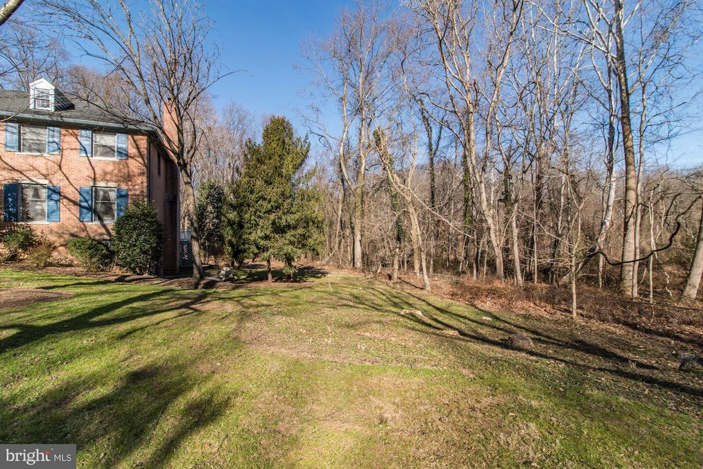 View of woods - 4148 ROUND HILL RD, ARLINGTON