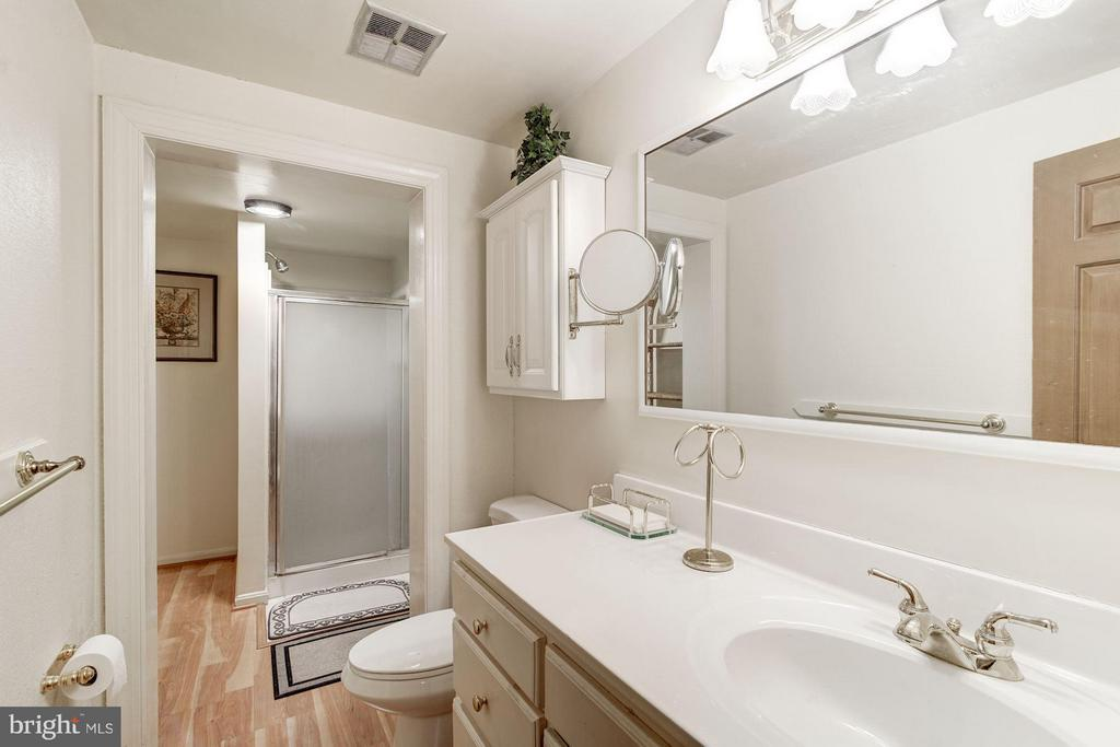 Lower Level Full Bath with shower - 4148 ROUND HILL RD, ARLINGTON