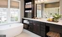 Owner's Luxury Bath - 40999 SPANGLEGRASS CT, ALDIE