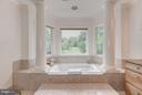 Master bedroom 2 bath - 534 UTTERBACK STORE RD, GREAT FALLS