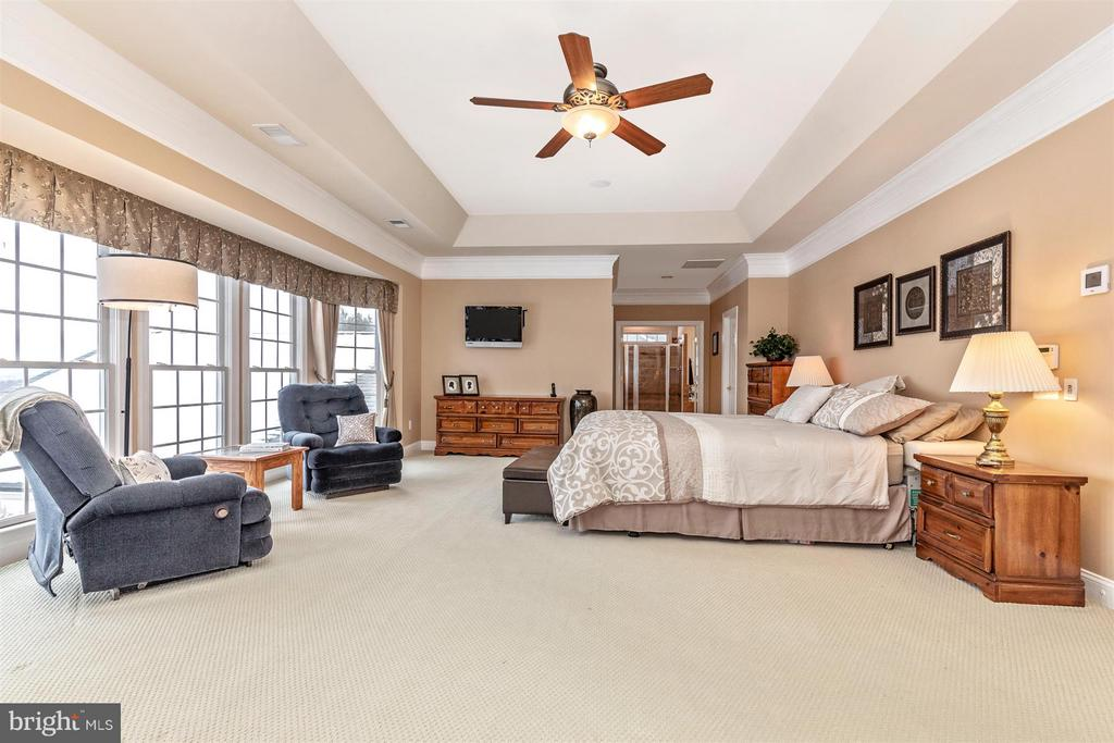 Tray ceiling & ceiling fan in master bedroom - 4207 MARYLAND CT, MIDDLETOWN