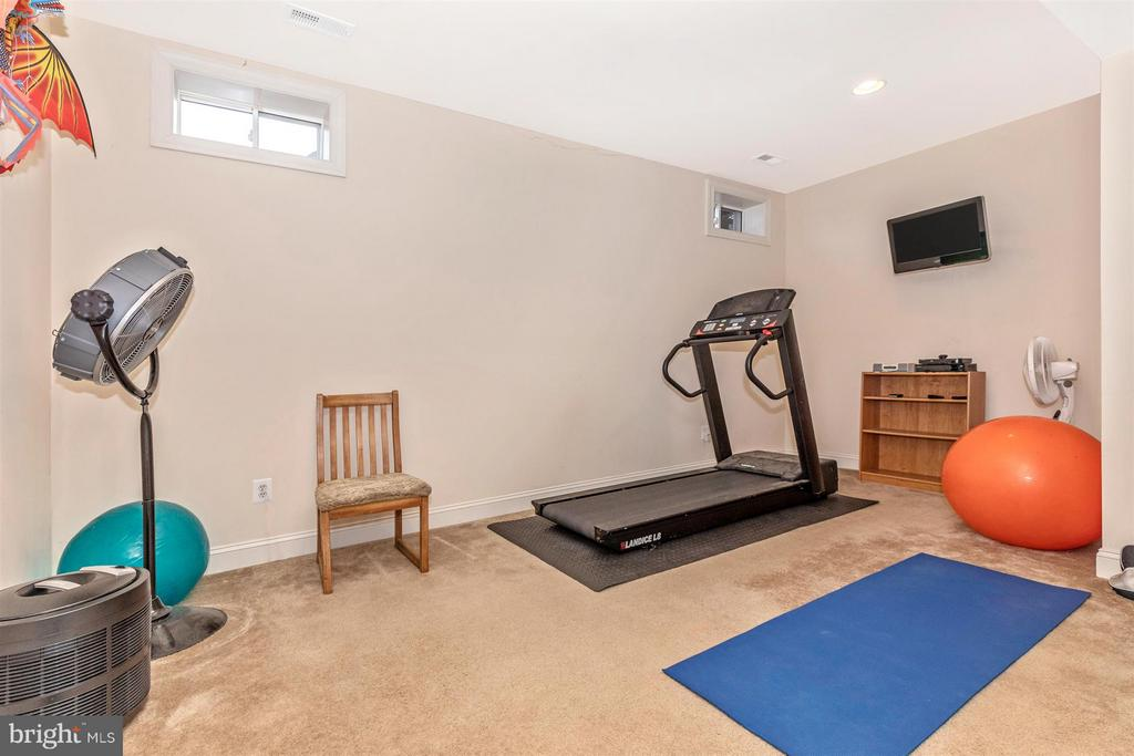 Exercise room/den on lower level - 4207 MARYLAND CT, MIDDLETOWN