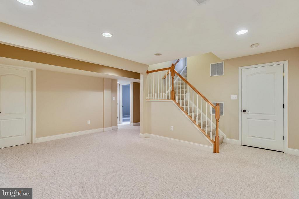 Lower level rec room - 21409 STURMAN PL, BROADLANDS