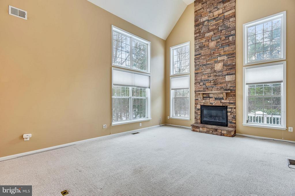 The family room has a lovely stone fireplace. - 21409 STURMAN PL, BROADLANDS