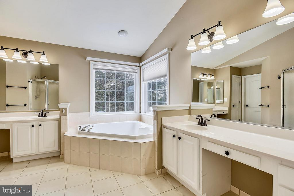 Separate sinks, separate tub and shower - 21409 STURMAN PL, BROADLANDS