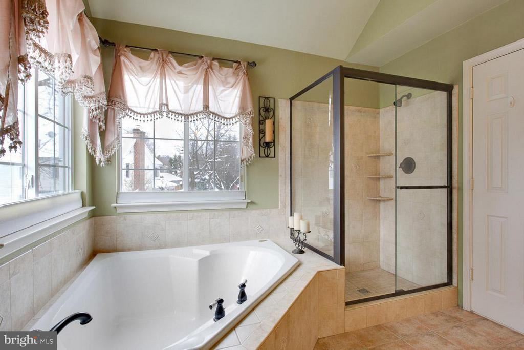 Relaxing soaking  Tub and Separate Shower - 109 LAKE VIEW WAY NW, LEESBURG