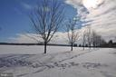 Snow covers maple tree lined pea gravel drive. - 40041 HEDGELAND LN, WATERFORD