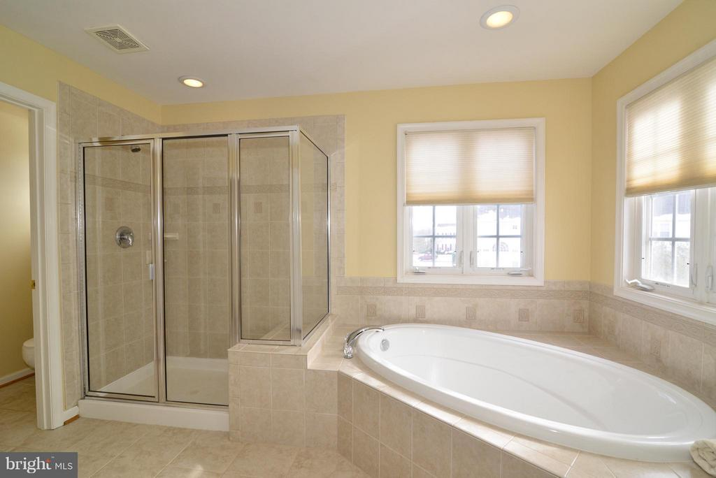 Master  bath and shower - 10613 BUSICK CT, GAINESVILLE
