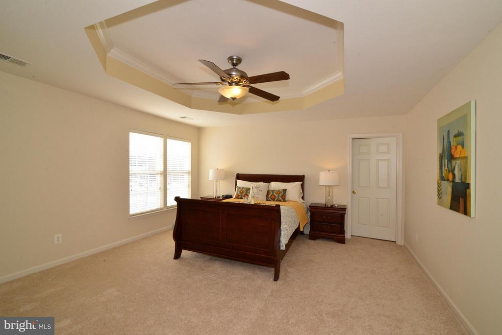 Master Bedroom - 10613 BUSICK CT, GAINESVILLE