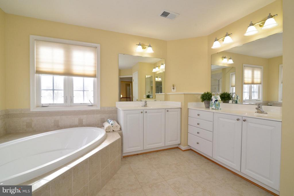 Master bath  and Vanity - 10613 BUSICK CT, GAINESVILLE