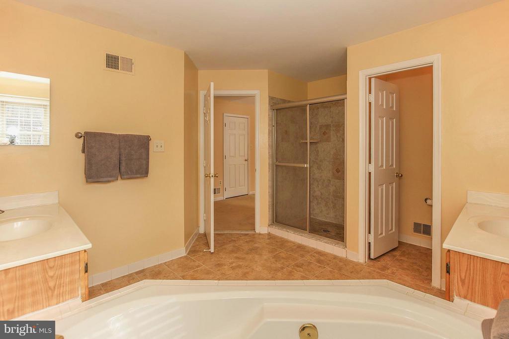 Master Bath - 46611 KINGSCHASE CT, STERLING