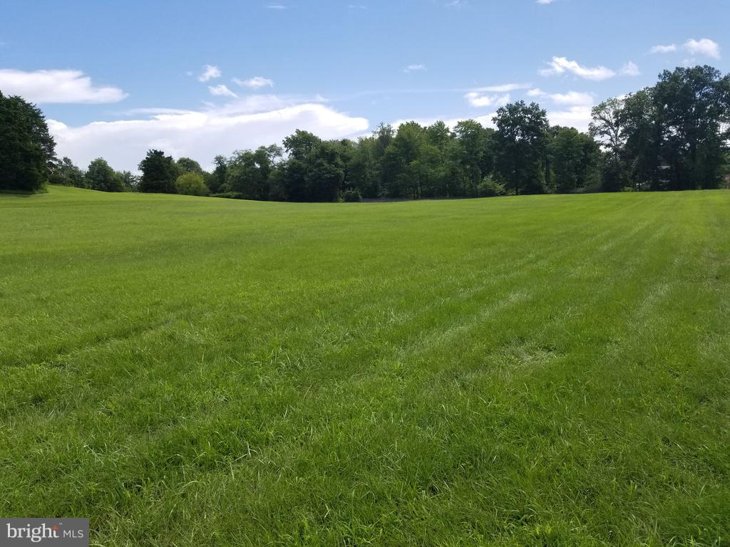 Rolling land to enjoy & play in. - 3240 HARNESS CREEK RD, ANNAPOLIS