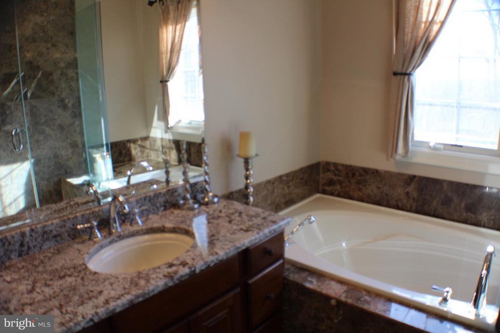 MARBLE AND GRANITE IN MASTER BEDROOM - 20970 STEPTOE HILL RD, MIDDLEBURG