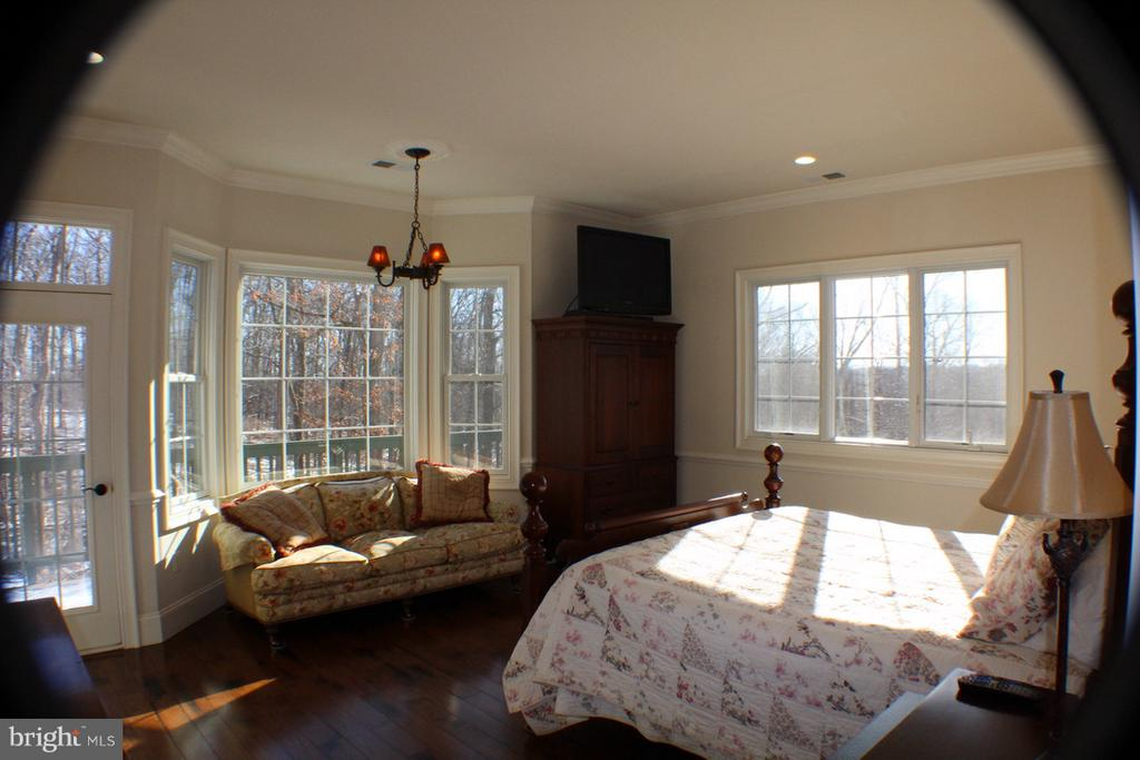 MASTER BEDROOM WITH MICA SHADE CHANDELIER - 20970 STEPTOE HILL RD, MIDDLEBURG