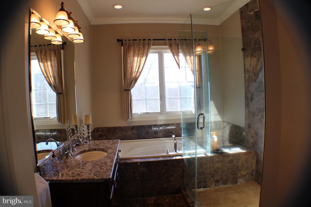 MASTER BATHROOM WITH SOAKING TUB - 20970 STEPTOE HILL RD, MIDDLEBURG
