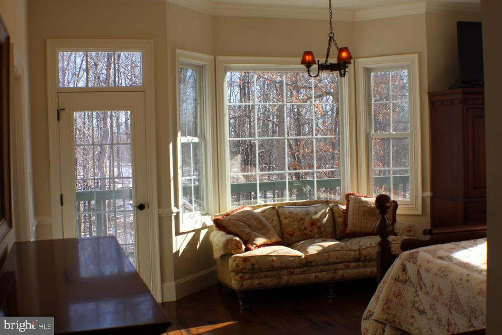FIRST FLOOR MASTER BEDROOM WITH DOOR TO SUN DECK - 20970 STEPTOE HILL RD, MIDDLEBURG