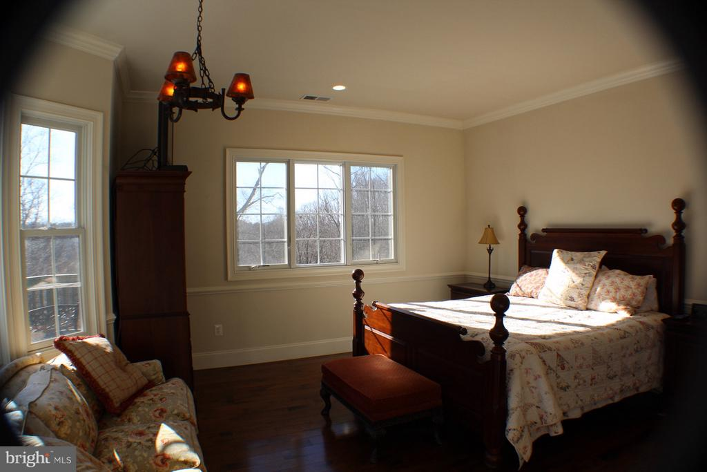 MASTER BEDROOM WITH PLENTY OF WINDOWS WITH VIEWS - 20970 STEPTOE HILL RD, MIDDLEBURG