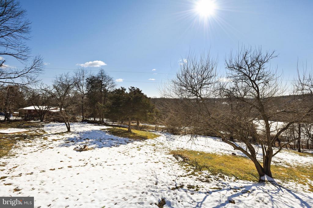 Gorgous Backyard with a view - 39877 THOMAS MILL RD, LEESBURG