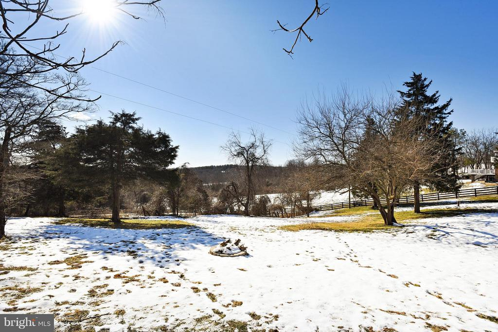 View from Patio to Right of Yard - 39877 THOMAS MILL RD, LEESBURG