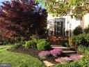 Beautiful  in bloom. Spring of 2018. - 1644 CHICKASAW PL NE, LEESBURG