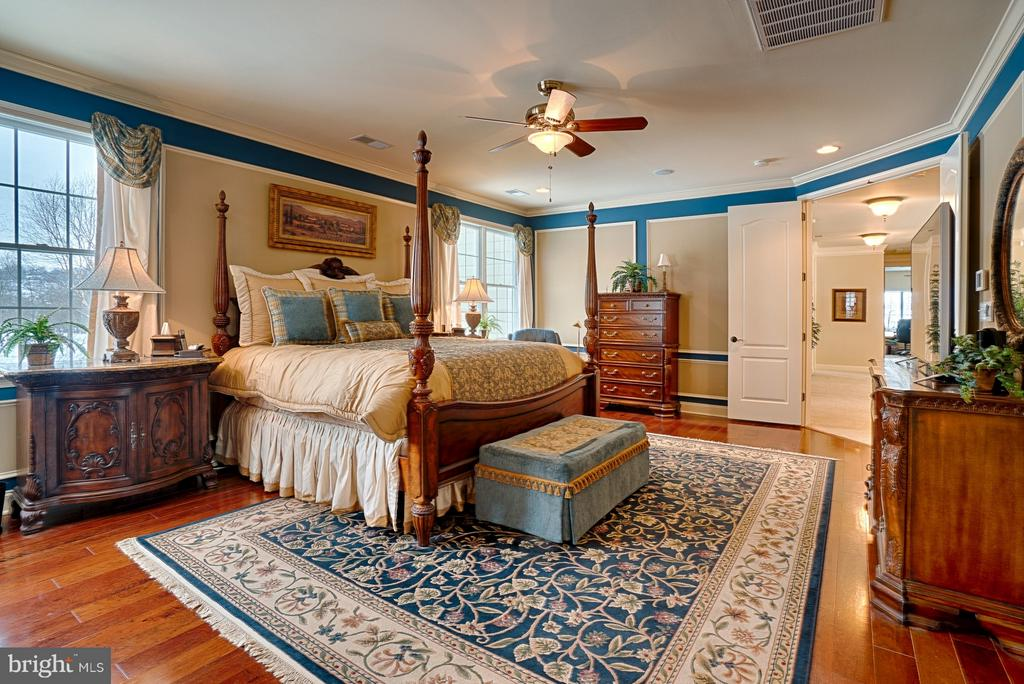Master Bedroom - 14786 BANKFIELD DR, WATERFORD